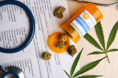 Learn About Legalized Marijuana and How It Impacts Nursing